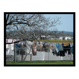 ~ Frühling in Lancaster County ~ 56 Postkarte