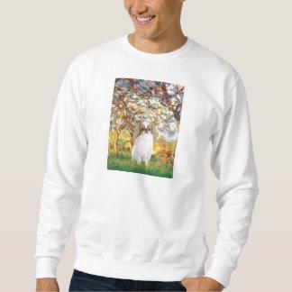 Frühling - Japaner Chin (L1) Sweatshirt