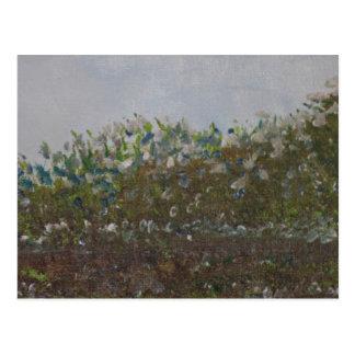 Frühlings-Blumen 2016 Postkarte