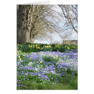 Frühlings-Blumen-Gruß-Karte Karte