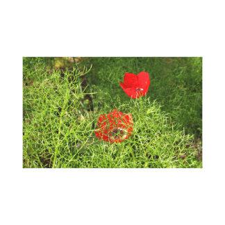 Frühlings-Blumen Leinwanddruck
