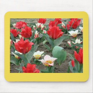 Frühlings-Blumen Mousepad