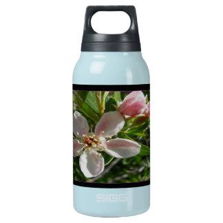 Frühlings-Blüte Isolierte Flasche
