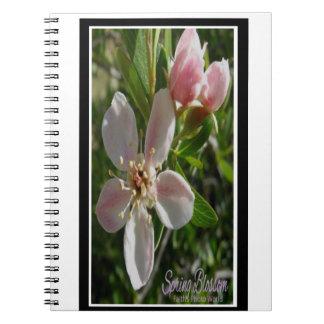 Frühlings-Blüte Notizblock