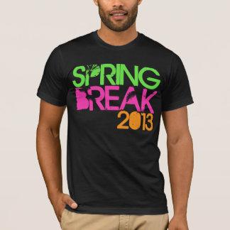 FRÜHLINGS-BRUCH T - Shirt 2013
