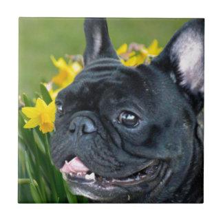 Frühlings-französische Bulldoggen-Hundedekorative Fliese