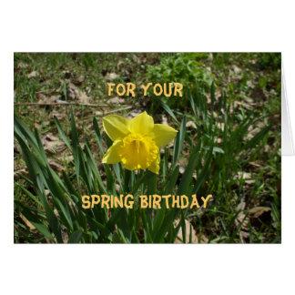 Frühlings-Geburtstag-Gelbe Narzisse Grußkarte