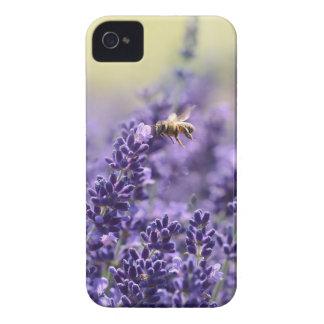 Frühlings-Lavendel mit Bienen-lila Blumen iPhone 4 Cover