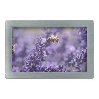 Frühlings-Lavendel mit Bienen-lila Blumen Rechteckige Gürtelschnalle
