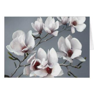 Frühlings-Magnolienblüte, weich Grau Karte