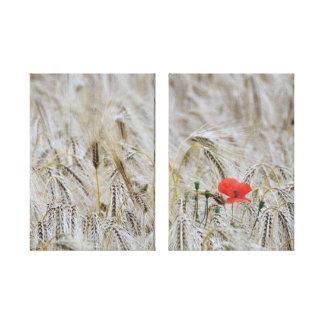 Frühlings-Mohnblumen-Blumen-Natur eingewickelte Leinwanddruck