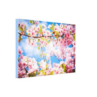 Frühlings-rosa Kirschblüten-Natur-Leinwand Leinwanddruck
