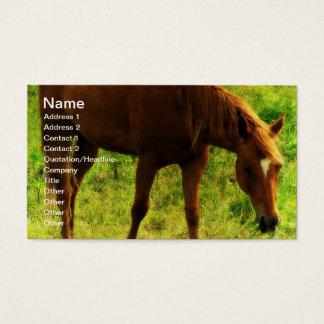 Frühlings-Träume, Sauerampfer, der Gras isst Visitenkarte