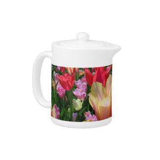 Frühlings-Tulpen