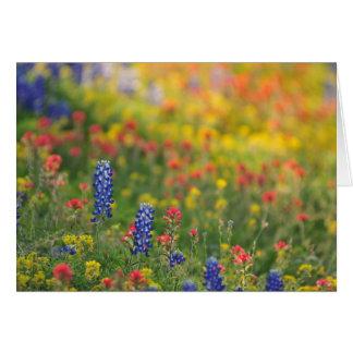 Frühlings-Wildblumen Grußkarte