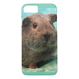 Frühlings-Zeit-Meerschweinchen-Telefon-Kasten iPhone 8/7 Hülle