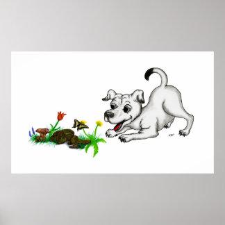 Frühlingserwachen, Welpe mit Schmetterling Poster