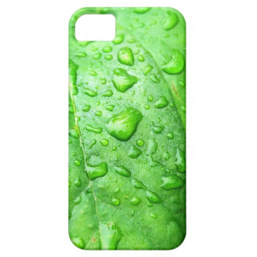 Frühlingsregen iPhone 5 Etuis