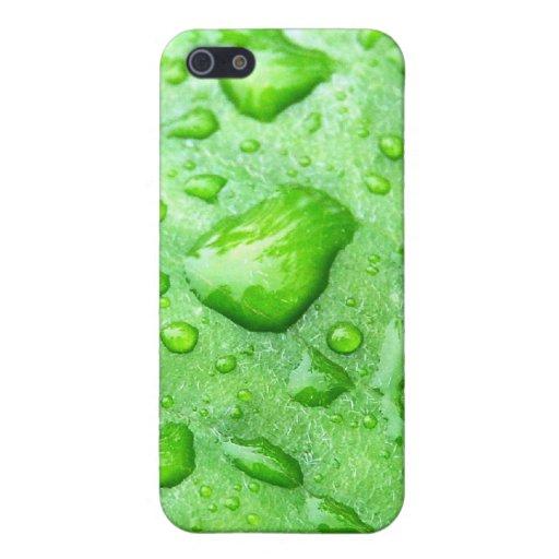 Frühlingsregen iPhone 5 Schutzhülle