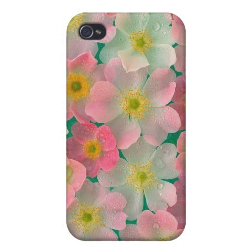 Frühlingsregen iPhone 4 Case