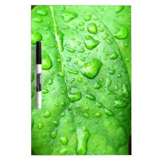 Frühlingsregen Memo Boards