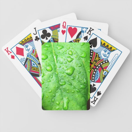 Frühlingsregen Spielkarten