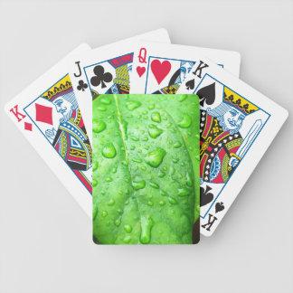 Frühlingsregen Poker Karten
