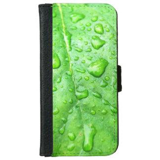Frühlingsregen-Tröpfchen auf grünem Blatt iPhone 6 Geldbeutel Hülle