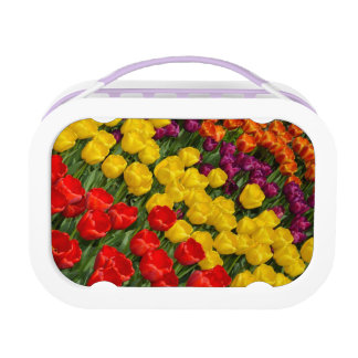 Frühlingstulpe-Druck Lunchbox