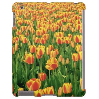 Frühlingstulpeblüte vor alter Scheune iPad Hülle