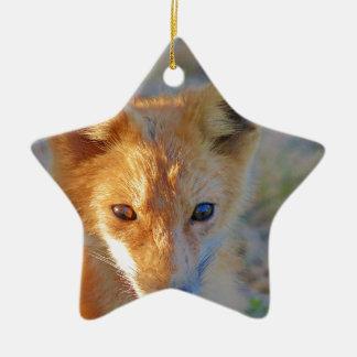 Fuchs Keramik Stern-Ornament
