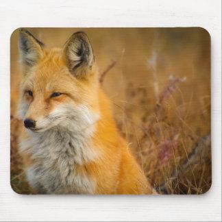 Fuchs Mousepad