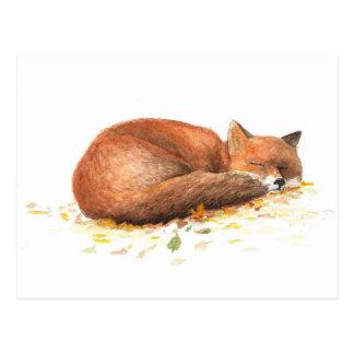 Fuchs Postkarte