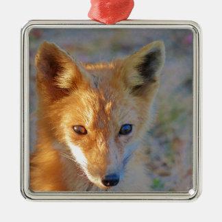 Fuchs Quadratisches Silberfarbenes Ornament
