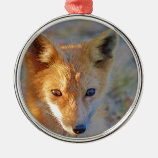 Fuchs Rundes Silberfarbenes Ornament
