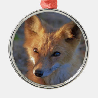 Fuchs Silbernes Ornament