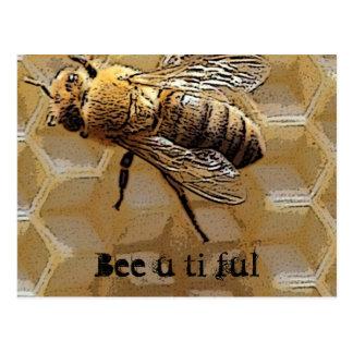 Ful Ti der Biene u Postkarte