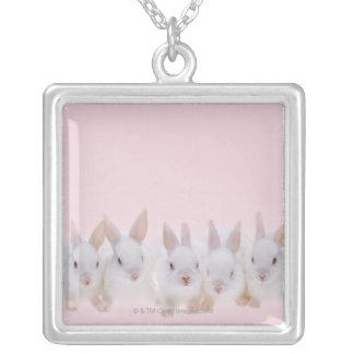 Fünf Kaninchen 2 Versilberte Kette