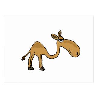 Funky Kamel-Cartoon Postkarte