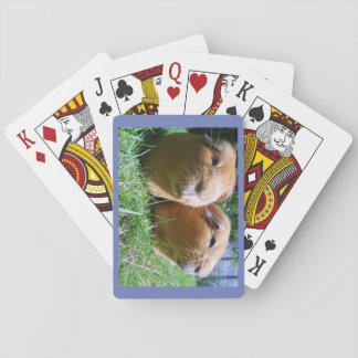 Für Leute, die Meerschweinchen genießen Spielkarten