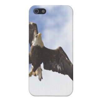Furchtlose kahler Adler-Natur-Szene iPhone Hüllen iPhone 5 Cover