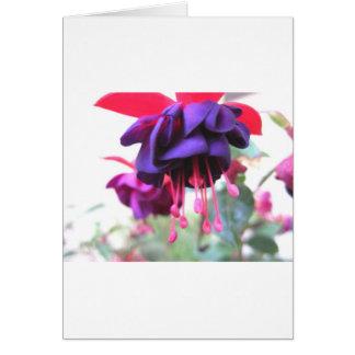 Fuschia Blumen-, Lila und heißesrosa Karte