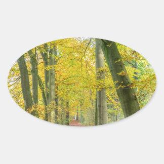 Fußweg im Wald bedeckt mit gefallenem Blätter Ovaler Aufkleber
