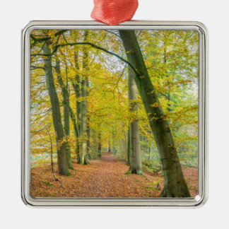 Fußweg im Wald bedeckt mit gefallenem Blätter Silbernes Ornament