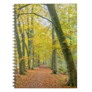 Fußweg im Wald bedeckt mit gefallenem Blätter Spiral Notizblock