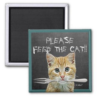 Füttern Sie bitte die Katze! - Quadratischer Magnet