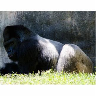 Gag-Geschenk-Gorilla 3 d Foto Ausschnitt
