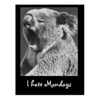 Gähnender Koala Postkarte