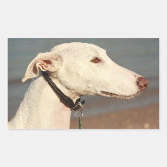 Galgo Windhund Rechteckiger Aufkleber