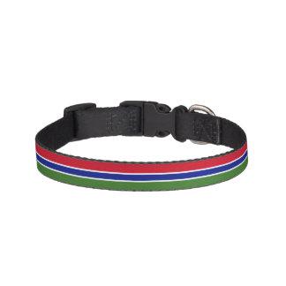 Gambia-Flagge Haustierhalsband